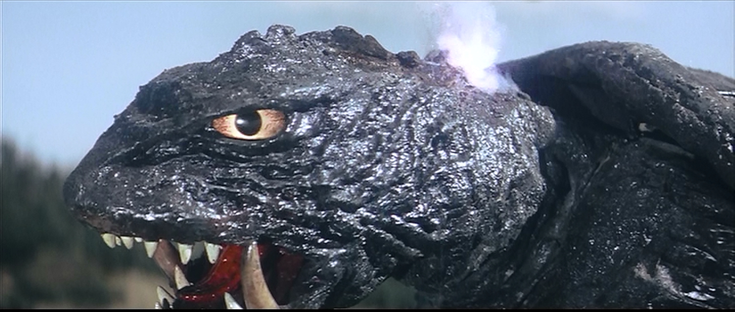 Gamera makes his will save.