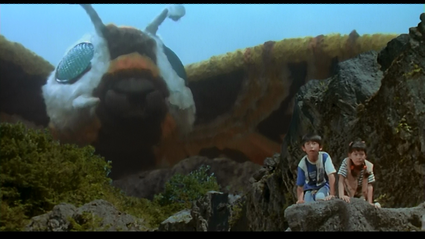Mothra sees you when you're sleeping...